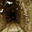 bats_in_the_tunnel_by_jasonjcane