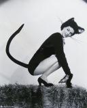 black-cat-catwoman-costume-dusty-anderson-Favim_com-230107